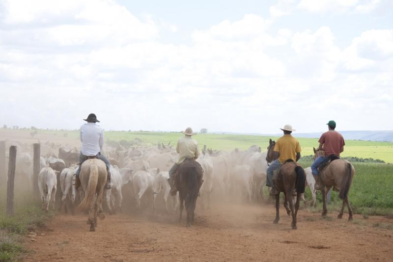 IMA inicia recadastramento obrigatório de produtores rurais em todo o estado