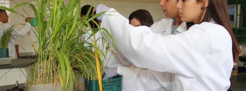 Epamig Itac abre inscrições para curso técnico em agropecuária