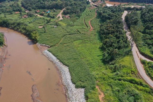 Animais silvestres estão retornando à região de Brumadinho