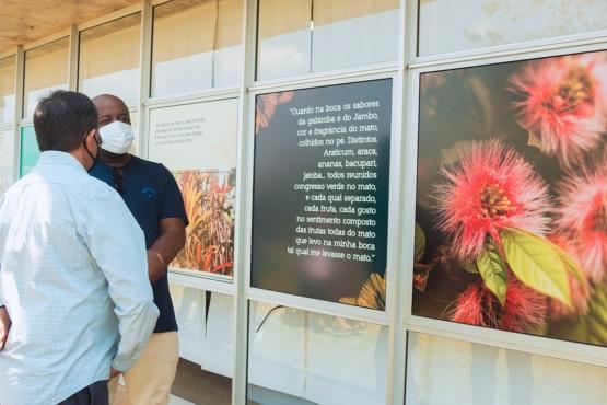 Dia da Natureza é comemorado com abertura de exposição sobre Drummond e Mata Atlântica