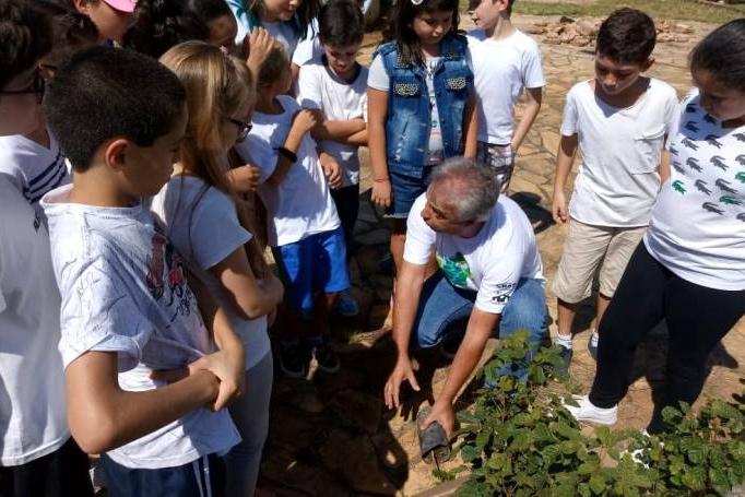 Emater-MG já distribuiu 12 mil mudas de plantas nativas para agricultores