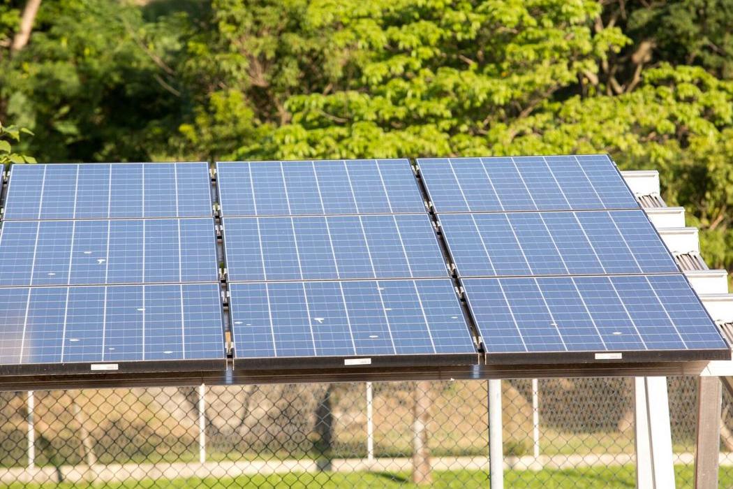 Bolsonaro diz que decisão sobre taxação de energia solar cabe à Aneel