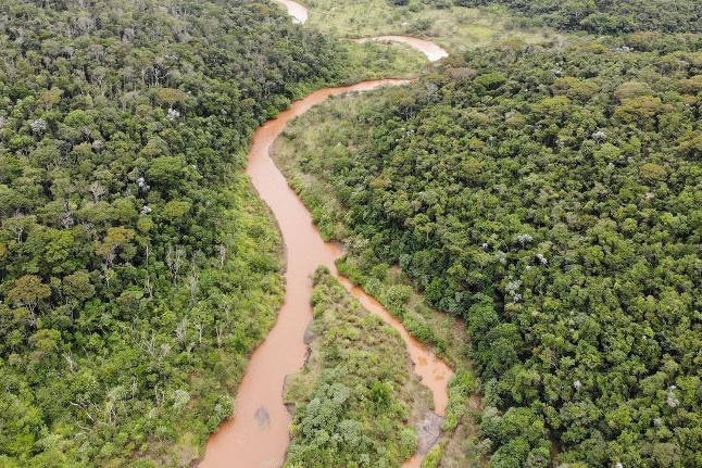 Fundação Renova restaura áreas atingidas por rompimento de barragem