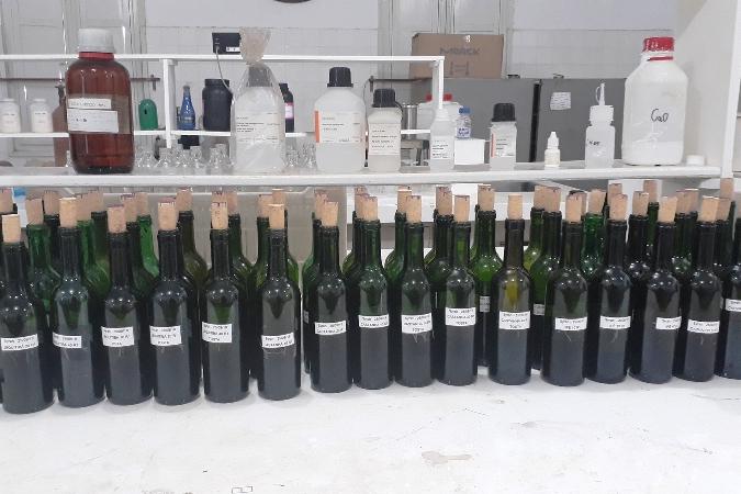 Pesquisa da Epamig avalia uso de madeiras brasileiras para envelhecimento de vinho